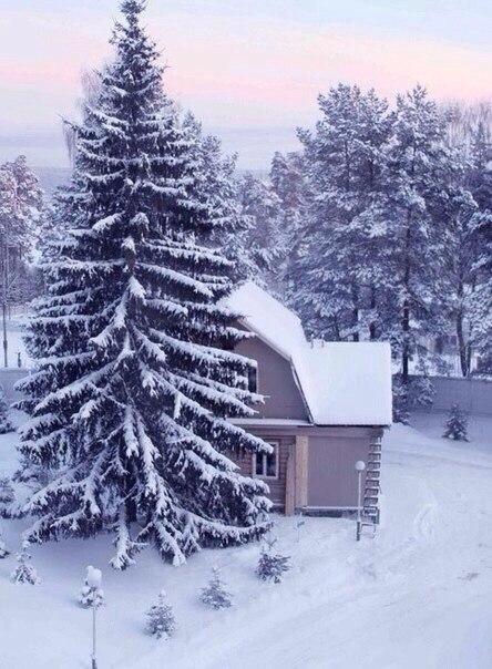 Я с детства испытываю своеобразное волнение перед свежим покровом снега… Точно вступаешь в какой-то ... - 5