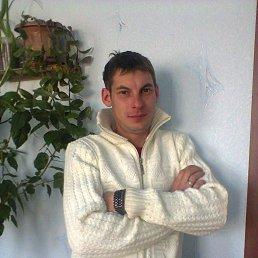 Денис, 34 года, Клетня