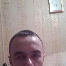 Павел, 29 лет, Боровичи