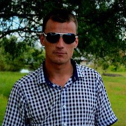 Андрей, 33 года, Щорс