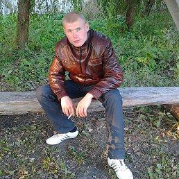 Вадим, 28 лет, Красноград