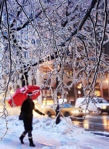Я с детства испытываю своеобразное волнение перед свежим покровом снега… Точно вступаешь в какой-то ... - 4