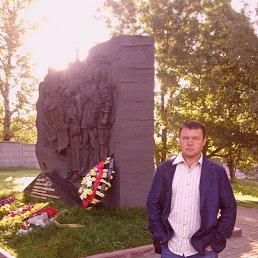 Андрей, 42 года, Вязьма