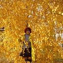 Фото Галина, Ульяновск, 64 года - добавлено 15 декабря 2014