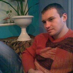 Богдан, 34 года, Белая Церковь