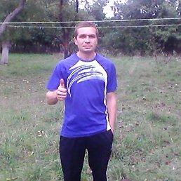 Дмитрий, 37 лет, Немиров