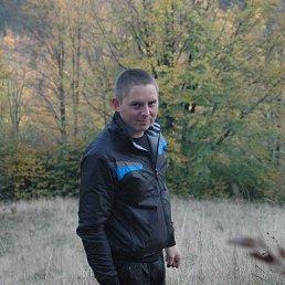 Миша, 29 лет, Дубовое