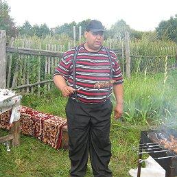 Андрей, 44 года, Весьегонск