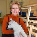 Фото Светик, Днепропетровск - добавлено 2 февраля 2015