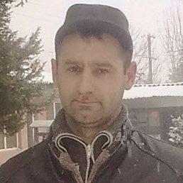 Roman, 41 год, Виноградово