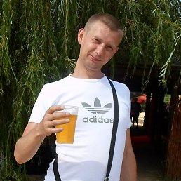 Артем, 36 лет, Мирный