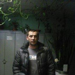 михаил, 33 года, Коренево