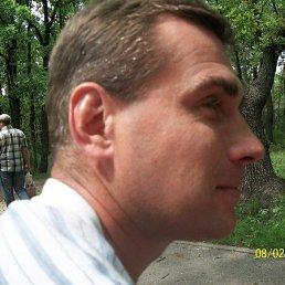 сергей, 46 лет, Яхрома