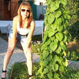 Алёнка, 34 года, Михайловка