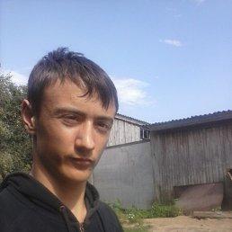 Ваня, 24 года, Шостка