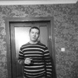 Роман, 26 лет, Любомль