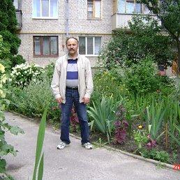 Анатолий, 64 года, Коростень