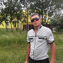 Павел, 26 лет, Кизел