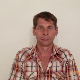 Анатолий, 53 года, Новоселицкое