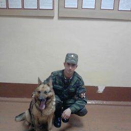 Владимир, 29 лет, Новая Брянь