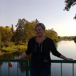 Наталья, 41 год, Судогда