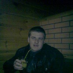 Александр, 25 лет, Новгород-Северский