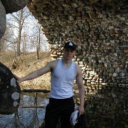Дмитрий, 31 год, Калашниково