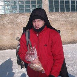 Толик, 28 лет, Весьегонск