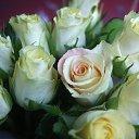 Фото Ксения, Ростов-на-Дону, 45 лет - добавлено 23 марта 2015