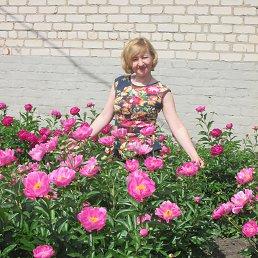 алла, 44 года, Красноград