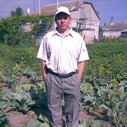 Sergey, 48 лет, Новый Буг