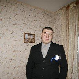 Константин, 24 года, Селидово