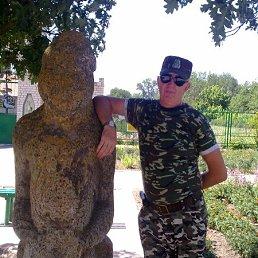 Владимир, 63 года, Аскания-Нова
