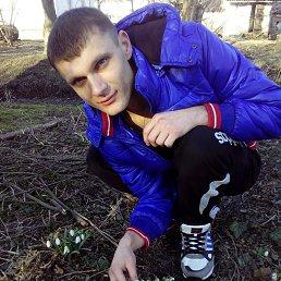 Тарас, 29 лет, Лысянка