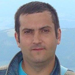 Тарас, Теофиполь, 41 год