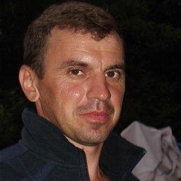 Александр, 42 года, Белополье