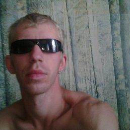 Алексей, 29 лет, Люботин
