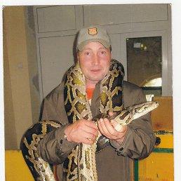 Андрей, 53 года, Купавна