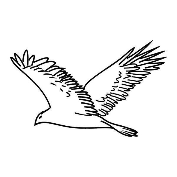 Черно-белые картинки птиц для распечатки с двух сторон есть