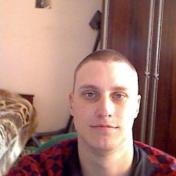 коля, 28 лет, Орлов