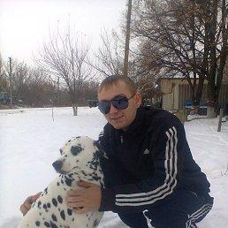 Виктор, 26 лет, Волоконовка