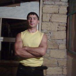 ЭЛЬДАР, 35 лет, Старый Крым