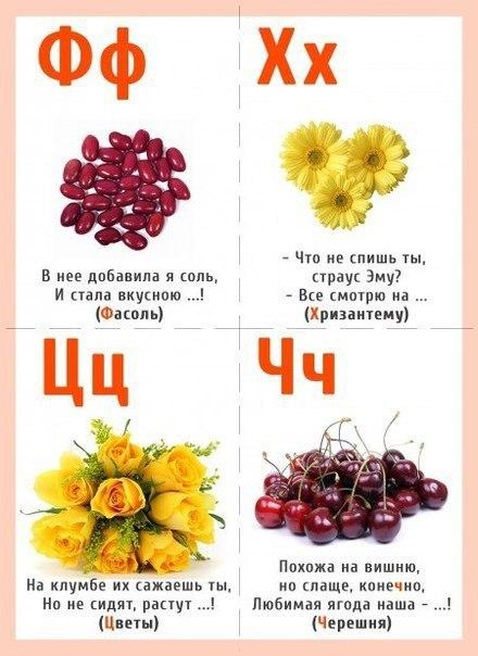 люди азбука загадок о растениях с картинками верить или нет