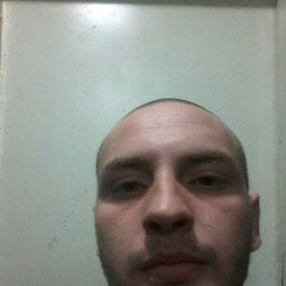 Сергей, 27 лет, Васильковка
