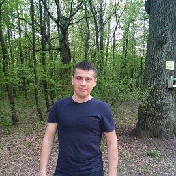 Сергей, 35 лет, Ямполь