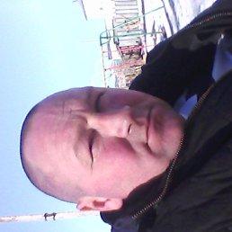 Дмитрий, 46 лет, Володарск