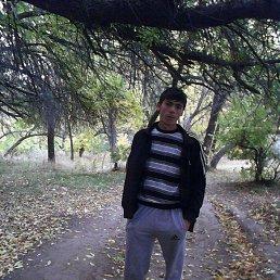 Саня, 27 лет, Ленинск