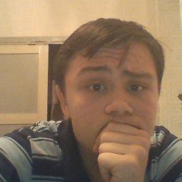 Николай, 24 года, Константиновск