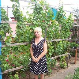 Елена, 58 лет, Елабуга