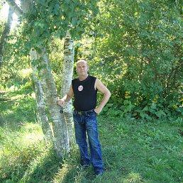 vladimir, 54 года, Росток